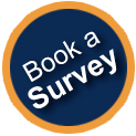 book a damp or timber survey